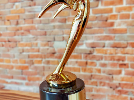 Boilermakers' film partner Wide Awake Films won a Bronze Telly award for the video they produced about the L-D239 lockout.